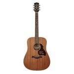 Richwood Master Series handmade dreadnought guitar