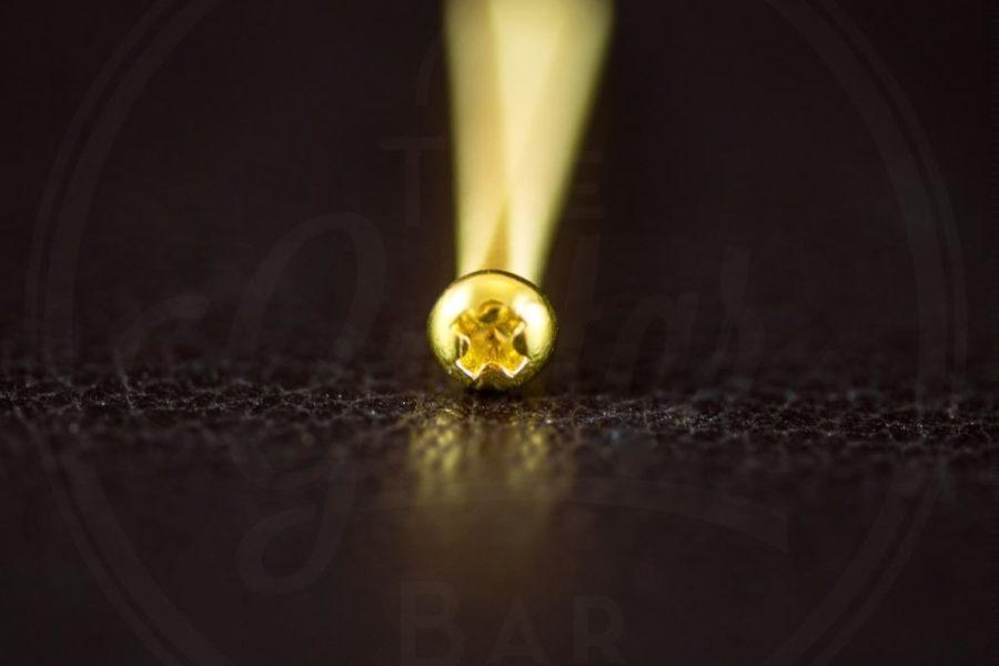 "StewMac humbucker height screw, 1-1/4"" (31,75mm), Philips roundhead, 3-48 thread, gold"