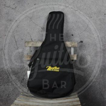 Boston bag for American mandolin