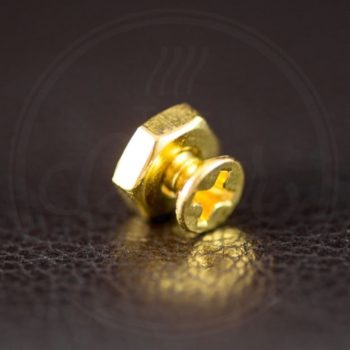 WD Music screw kit for pickguard bracket, gold